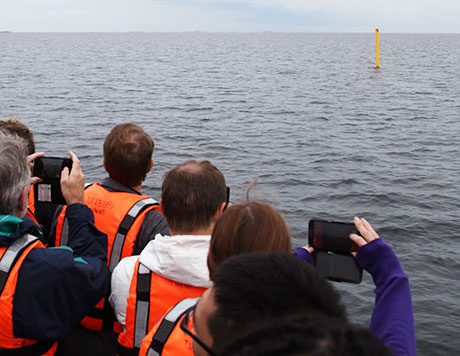 Yellow border buoy on sea surface which students are taking pictures on