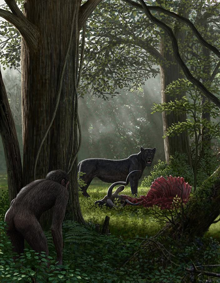Painting of the now extinct saber-toothed cat Dinofelis eating. Human-like figure watching.
