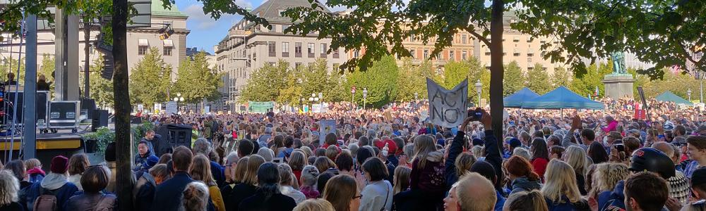 Fridays for Future (FFF) demonstrations in Stockholm.