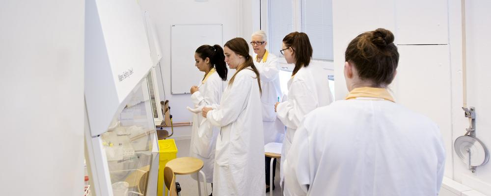 Biomedicinska analytikerstudenter i labb