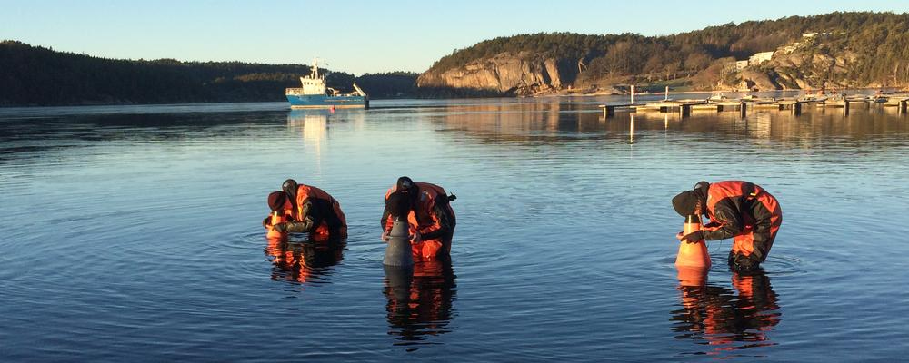 Three university students walking in shallow water with rescue suits and aquascopes