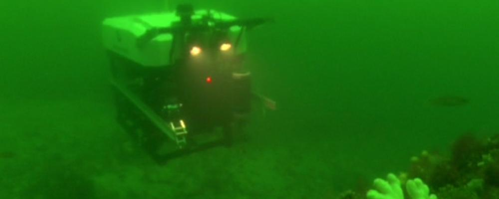 A whitecoloured Remotely Operated Vehicle photographed by diver in the sea