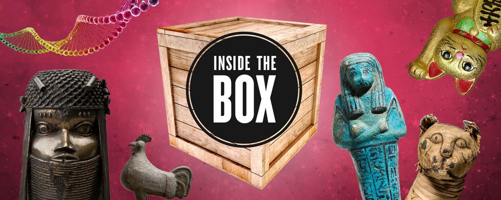 Inside the Box: Season 1 - 2019
