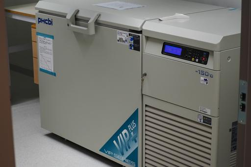 Cryofreezer (-152°C) for long term storage