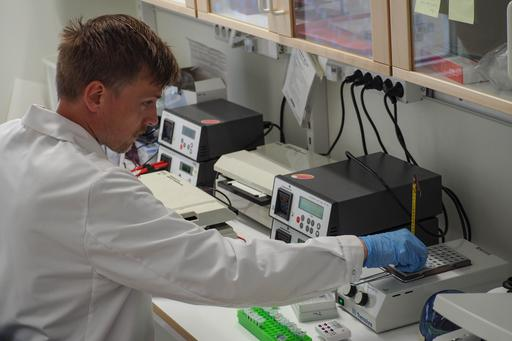Electrophoresis equipment for product analysis