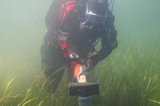 Robin Svensson, research engineer at the Department of Marine Sciences at the University of Gothenburg, takes sediment samples